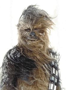 chewie-snow