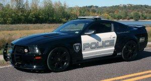 decepticon-police